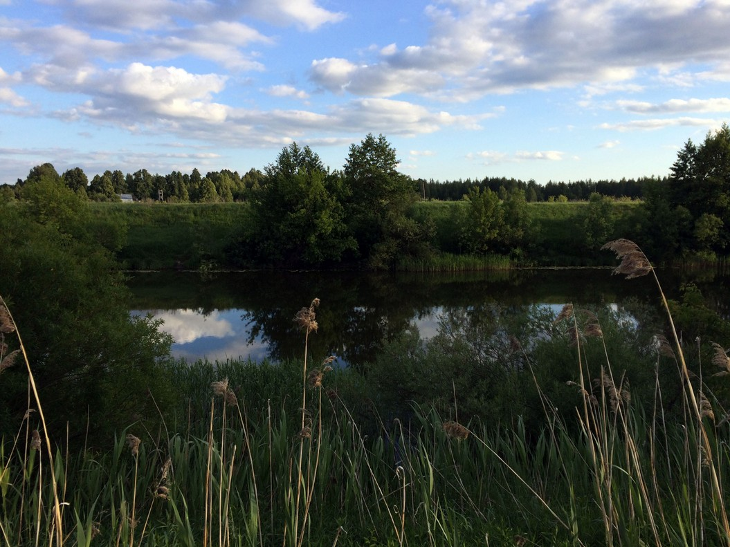Вид на реку Проня от пашни
